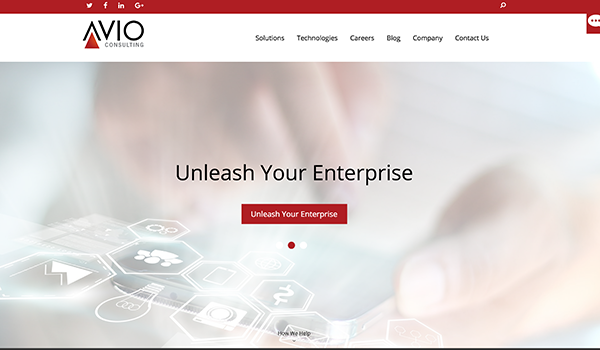 Avio Consulting Screenshot
