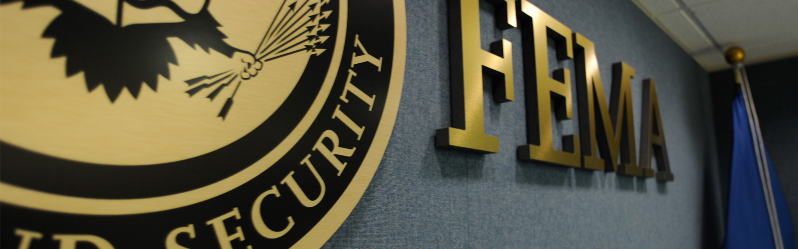 Image of FEMA crest and logotype